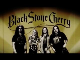 Rencontre – Black Stone Cherry